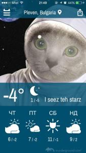 favorite apps iphone weather whiskers